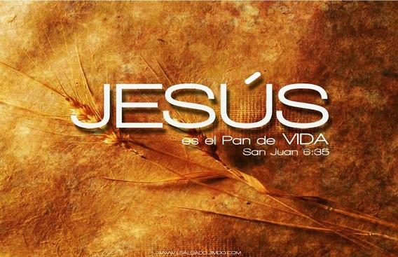 JUAN 6:35  Jesús les dijo: Yo soy el pan de vida; el que a mí viene, nunca tendrá hambre; y el que en mí cree, no tendrá sed jamás.