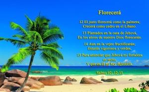 Salmo 92 12-15, el justo florecerá