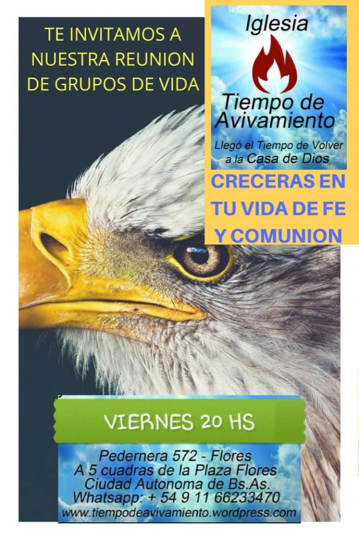 FOLLETOS GRUPOS DE VIDA 2